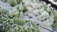 Les fleurs de l'Arbreuvoir