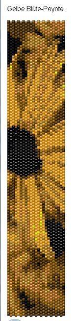 Gelbe+Bl%C3%BCte-Peyote+20.03.2011+160427.bmp.jpg 165×655 Pixel
