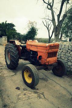 Vintage Fiat tractor | Photo: © Michele Miccoli