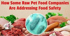 Scientists discovered that bacteriophages, a type of naturally-occurring virus, can dramatically reduce salmonella in raw pet food. http://healthypets.mercola.com/sites/healthypets/archive/2016/11/28/raw-pet-food-salmonella.aspx