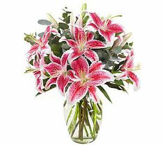 Sameday delivery by a professional florist in Caro, MI. Artistically designed flower arrangements for birthdays, anniversary, new baby, sympathy or any occasion. Country Carriage Floral will deliver flowers right to your door. Flowers For Mom, Special Flowers, Same Day Flower Delivery, Flowers Delivered, Blooming Plants, Stargazing, Wedding Bells, Flower Arrangements, New Baby Products