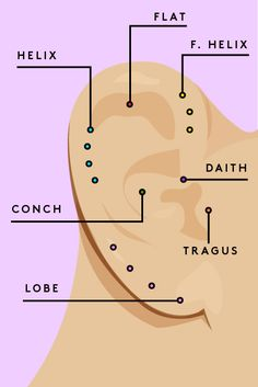 Creative Ear-Piercing Combos — Straight From The Pros Tragus, Daith, Helix? Who knew the piercing-ready parts of our ears had such cool, futuristic names? Ear Piercing Spots, Ear Piercing Guide, Ear Piercings Chart, Ear Peircings, Cute Ear Piercings, Body Piercings, Unique Piercings, Front Helix Piercing, Double Forward Helix Piercing