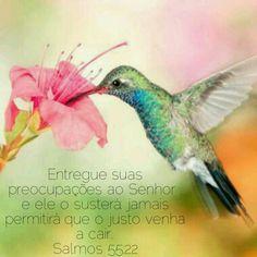 Entregue suas preocupações ao Senhor , e ele o susterá; jamais permitirá que o justo venha a cair.  Salmos 55:22 NVI