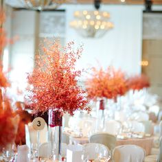 An elegant setting invites the couple's banquet of 12 traditional Chinese dishes.