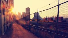 """""""But for now Danny's happy right where he is. Sitting on the train tracks. With his best friend. Watching a sunrise"""" (247)."""