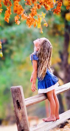 Little girl looking up at leaves while standing on fence pose Autumn Photography, Family Photography, Portrait Photography, Photography Ideas, Outdoor Children Photography, Sweets Photography, Little Girl Photography, Toddler Photography, Ideas Para Photoshoot