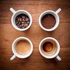 El proceso del café www.ganodermaentutaza.com