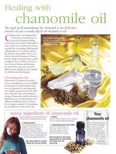 Herbs: Healing with Chamomile Oil | Visit www.facebook.com/goldenbirdwings for parenting resources | Health | mydoterra.com/gaildempsey