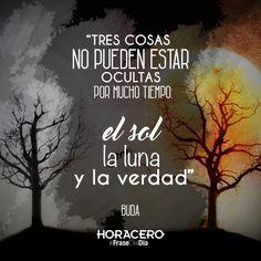 """""""Tres cosas no pueden estar ocultas por mucho tiempo: el sol, la luna y la verdad"""" Buda #frases #citas #frasedeldía"""