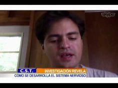 Dr. Daniel Colón nos habla de su último trabajo sobre el cerebro