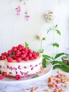 The official BREAKFAST yogurt cake! Using only ingredients from my breakfast table. Yogurt Breakfast, Ice Cream Pies, Yogurt Cake, Fancy Desserts, How To Eat Better, Piece Of Cakes, Something Sweet, Desert Recipes, Let Them Eat Cake