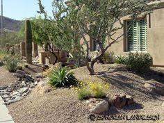 Arizona Desert Landscaping Design Sonoran Landesign Source By