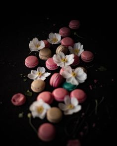 Any preferences for the next macaron recipe to develop for you? . . . #recipedevelopment #macarons #...