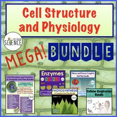 Cell Physiology Mega Bundle. Includes 5 Complete Unit Plan Bundles. Cell Structure and Function, Mitosis and Meiosis, Enzymes and Chemical Reactions, Photosynthesis and Cellular Respiration