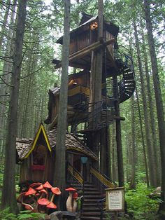 tree houses to live in | want to live in this treehouse