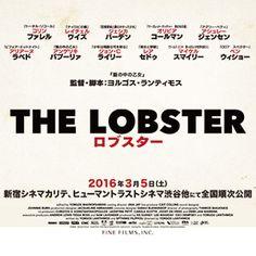 映画『ロブスター』公式サイト。大ヒット上映中