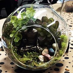 Our customers are so creative! We love this twist on our terrarium project! She bought her own Buddha and brought him in with her to place in her creation. #terrarium #buddha #globe #garden #diy #faux #ecosphere #airplant #calming #meditation #zen