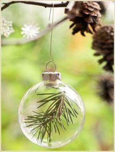 モミの木をガラスボールに閉じ込めて。ヒイラギの赤い実やエアープランツなど、いろんなバリエーションが出来そう!