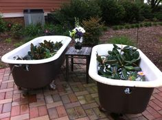 Vintage bathtubs make a perfect beverage holder for a rustic wedding