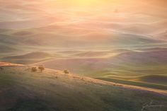 Golden Dawn by Jesse Summers on 500px