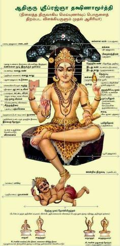 Shiva Hindu, Hindu Rituals, Hindu Mantras, Shiva Art, Shiva Shakti, Hindu Deities, Hinduism, Om Namah Shivaya, Shiva Yoga