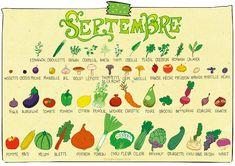 Septembre - Fruits & légumes