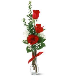 Order 3 Red Roses from Ace Flowers, your local Houston florist, Floristeria. Send 3 Red Roses for fresh and fast flower delivery throughout Houston, TX area. Valentine's Day Flower Arrangements, Rosen Arrangements, Hot Pink Roses, Red Roses, Bud Vases, Flower Vases, Red Flowers, Beautiful Flowers, Gift Flowers