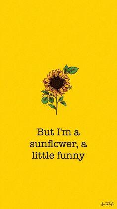 Cute Wallpaper: Sunflower Movie: Sierra Burgess Is A Loser Et Wallpaper, Tumblr Wallpaper, Wallpaper Iphone Cute, Aesthetic Iphone Wallpaper, Wallpaper Quotes, Cute Wallpapers, Aesthetic Wallpapers, Cute Backgrounds, Wallpaper Backgrounds