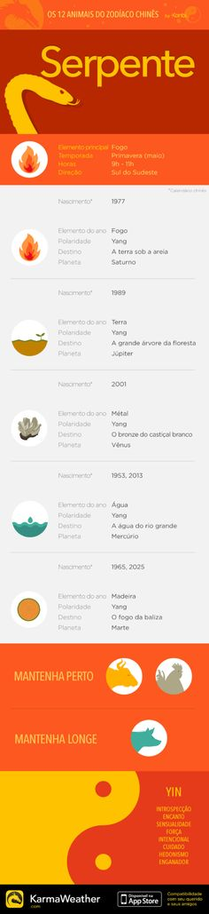 Snake — Infography and Chinese horoscope for your zodiac sign - Chinese compatibility app for iPhone
