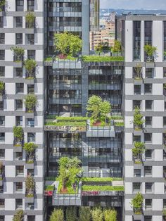 designed by singapore-based firm WOHA, 'sky green' is a mixed-use development located at the heart of taichung city, taiwan. Mix Use Building, Green Building, Creepers Plants, Green Tower, Taichung Taiwan, University Architecture, Green Facade, Mixed Use Development, Green Pictures