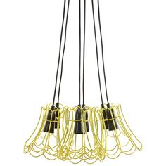 Dainty Ceiling Pendant   Freedom Furniture and Homewares