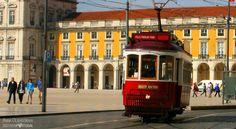 туристический трамвай