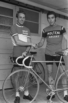 Découvrez vite les derniers maillots de cyclisme vintage ! (molteni, bic, peugeot, brooklyn, colnago... tour de france retro vintage, cyclsime, vélo course)