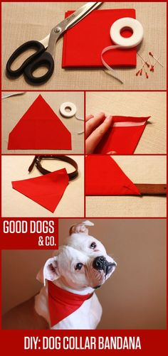 Make your dog a bandana that slides onto their collar—keeps it from coming untied! Perfect for even fussy dogs who don't like wearing accessories.