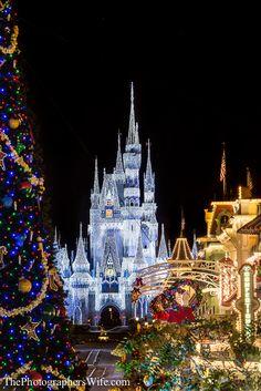 christmas at disney world 3 disney world castle disney castles disney world - Disney During Christmas
