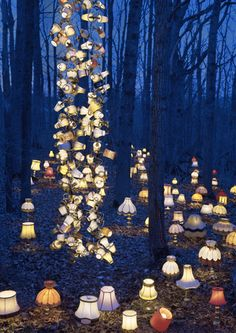 Antique lamps in a forest, photography, whimsical