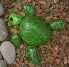 PAINTED TURTLE ROCKS....Adorable!! This is such a cute idea for a Garden or Potted Plant & so easy to make! http://www.craftymorning.com/paint-rocks-look-like-turtles-fish/
