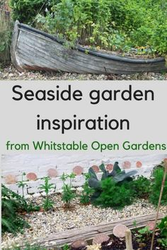 Whitstable Open Gardens is held every year in June for the NGS. But if you can't wait till then, read this for seaside garden inspiration and enjoy that holiday feeling. Garden Theme, Beach Landscape, Backyard Beach, Beach Theme Garden, Outdoor Gardens, Garden Design Layout, Seaside Garden, Beach Garden Design, Beach Gardens