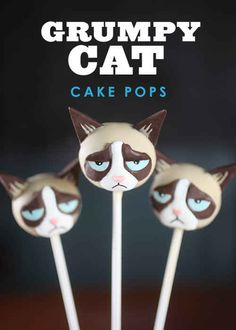 Oh Shit, Grumpy Cat Cake Pops - BuzzFeed Mobile
