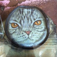 A cat can by My Dog Sighs