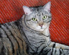 Gray Tabby Red Rug custom Pet Portrait Oil by puciPetPortraits