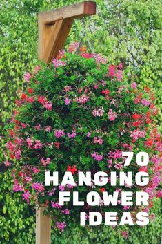 70 hanging flower basket ideas. Incredible collection of some of the most spectacular hanging flower baskets you've ever seen. All types of popular flowers, basket designs and locations. #hangingflowerbaskets #flowers #gardening
