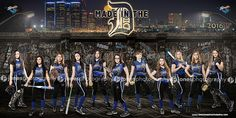 Jones Photography_Team Banner_Softball_Picture_Bandits_2016_Jones Photography_JonesPhotography_Sports Banner_Softball Banner_Baseball Banner_Team Pictures_Softball Posters_Sports Posters_Softball Team Pictures_Macomb County Photographer_Sterling Heights Photographer
