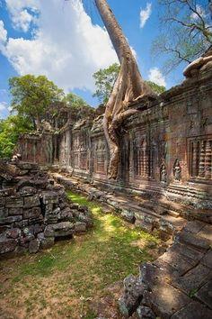 Stunning Views: Angkor
