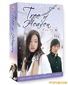 Tree of Heaven Korean Drama DVD Boxset starring Park Shin-Hye and Lee Wan for $39.99