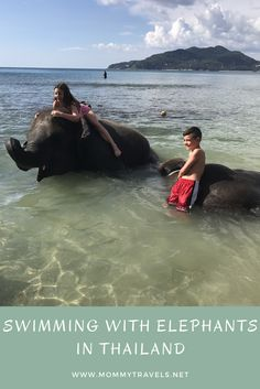 Swimming with Elephants in Phuket, Thailand