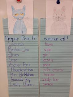 Common and Proper Nouns Chart--unit 2 skill