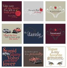 A collection of the most memorable and popular quotes from the Twilight saga. It shows the language of the characters that fans love.