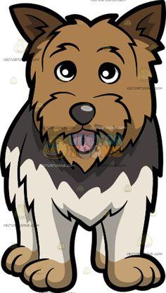 Beautiful Fur Brown Adorable Dog - 9b34cb5f862e64814501dc734667013b--yorkshire-terrier-white-fur  Image_311310  .jpg