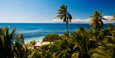 The Perfect Getaway, Island Resort, South Pacific, Fiji, Snorkeling, Kayaking, Acre, Lush, Surfing